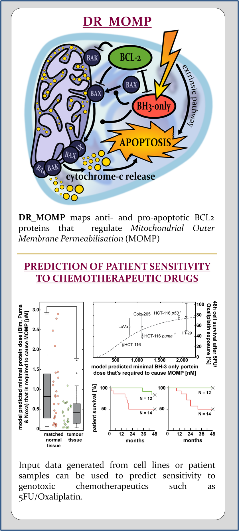 Dose-Response Medicinal Outcome Model Predictor