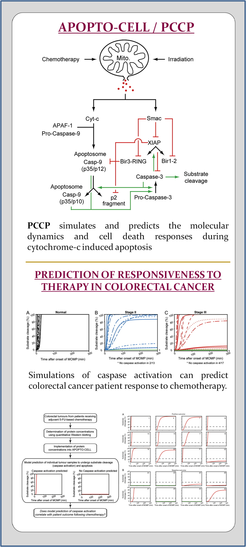 Prediction of Cancer Response to Genotoxic Chemotherapy and Personalised Neoadjuvant Treatments