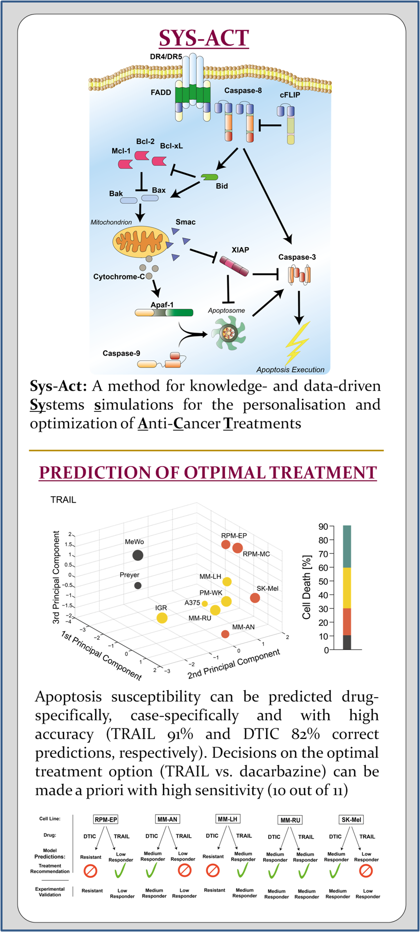 Systems simulations for the personalisation and optimization of Anti-Cancer Treatments