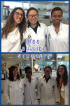 RSS summer students