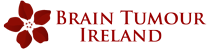 braintumour ireland logo